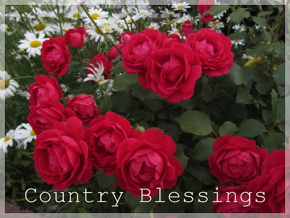 Country Blessings