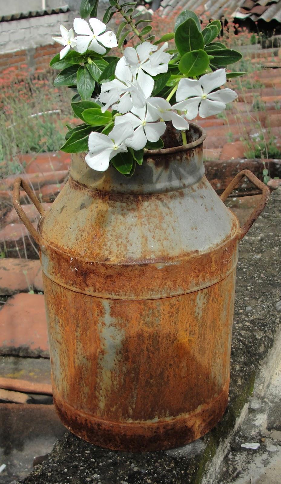 Desde jalisco bazar botes lecheros para una decoraci n muy original - Decoracion con antiguedades ...