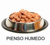 Inspeccion de los alimentos humedos