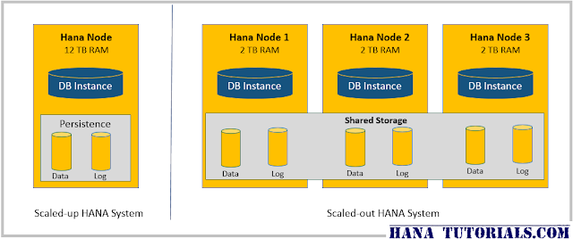 SAP HANA Scale-Up and Scale-out system