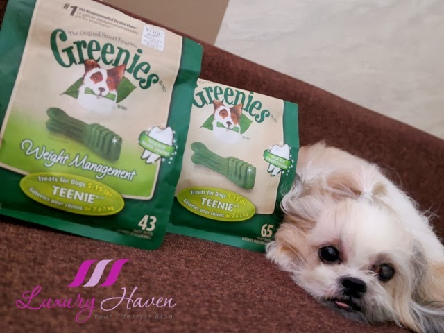 vitacost greenies dental chews dog treats review
