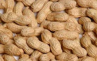 Ginjal sehat berkat kacang