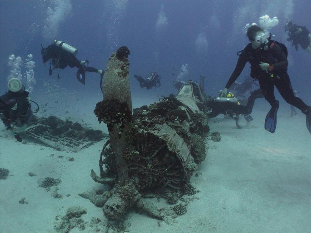 february 2013 oahu scuba diving island divers hawaii dive reports