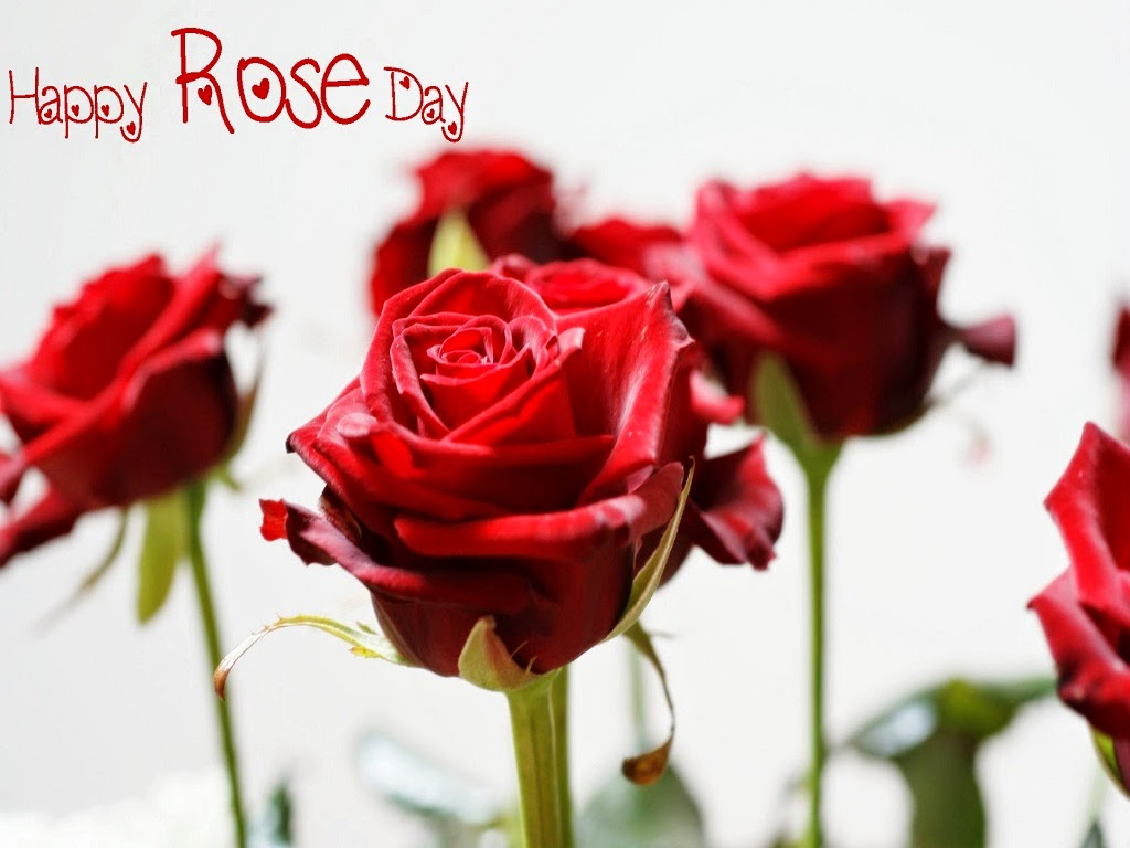 Rose Day 2015 Romantic Facebook Status