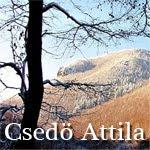 Csedő Attila