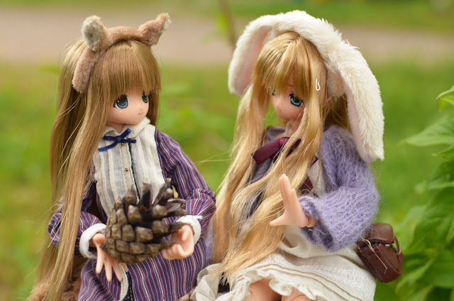 azone animal friends