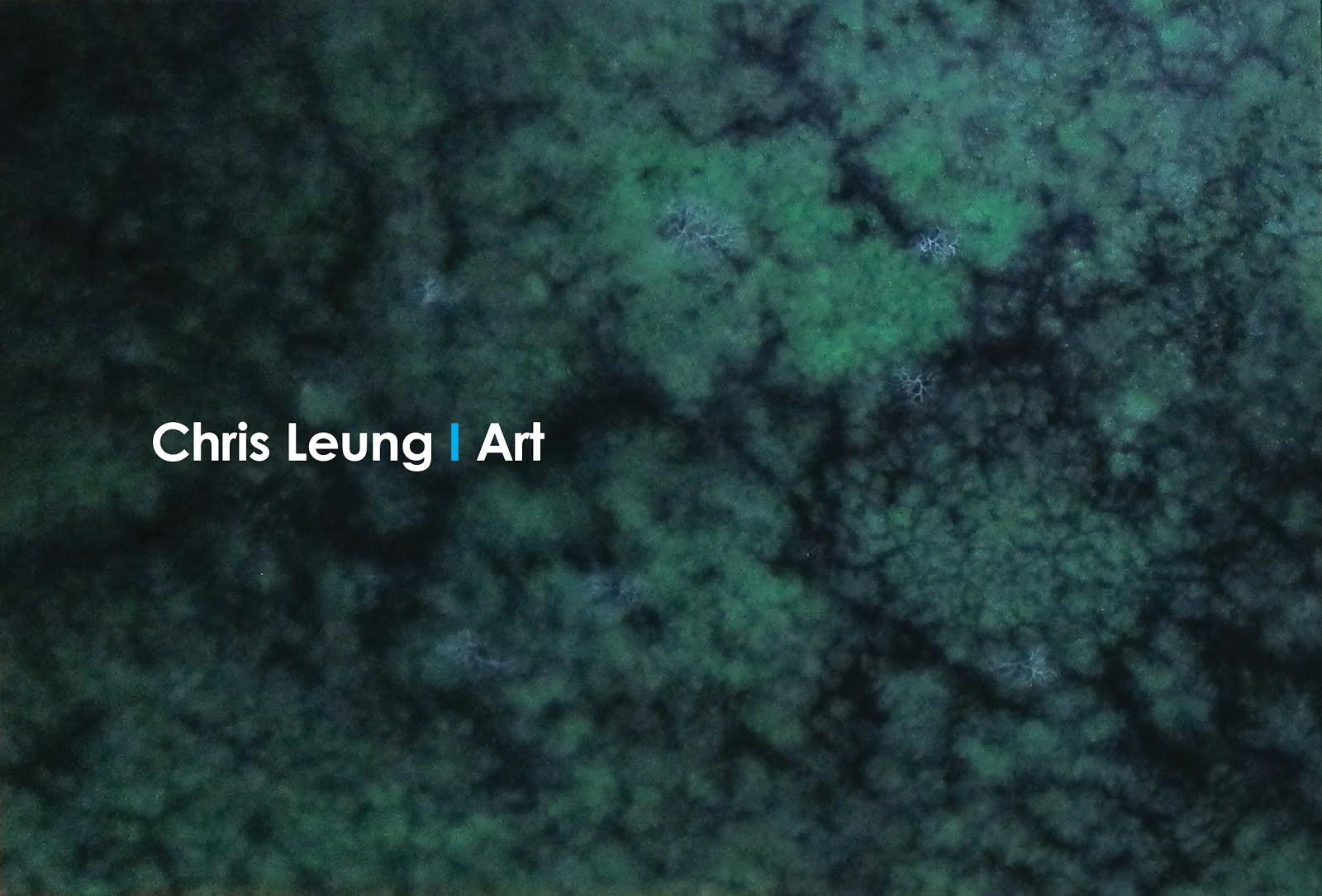 Chris Leung Art