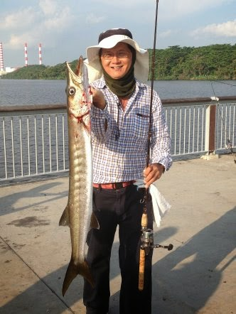 Yellowtail Barracuda [Sphyraena Flavicauda] also know as Saw Kun 沙君 [Hokkien] or Ikan Kacang [malay] weighing 4kg plus caught by Ah Cheng at Woodland Jetty on 20th Jul 2014 using live Five-spot Herring or Assam fish (local), Selangat (malay) on float.