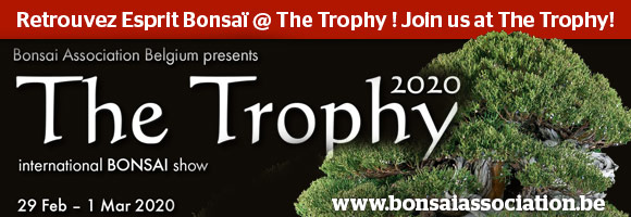 Retrouvez Esprit Bonsaï @ The Trophy ! Join us at The Trophy!