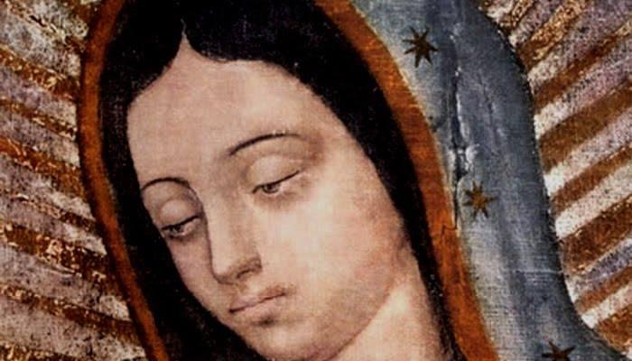 Libro: El Tratado de la Verdadera Devoción de la Santísima Virgen María (dar clip en la imagen)