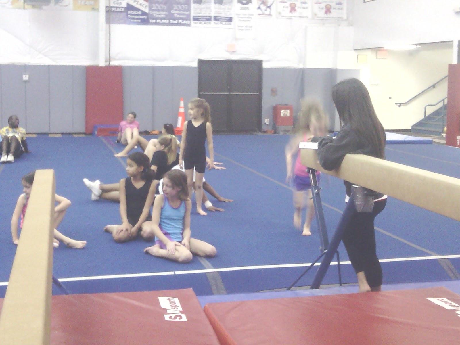 victors gymnastics meet 2012