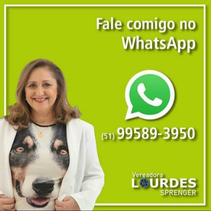 WhatsApp Lourdes Sprenger Vereadora