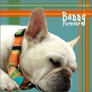 Benny - Forever