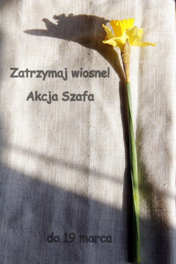 http://nieladmalutki.blogspot.com/2014/03/akcja-sukienka-akcja-szafa.html