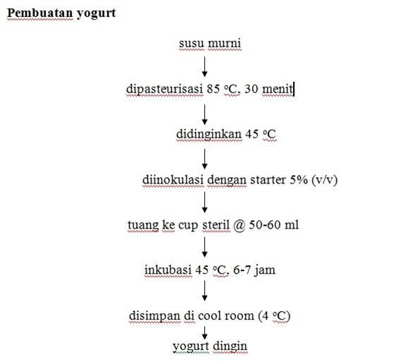 Pembuatan yougurt karunia cahaya fajar proses fermentasi yoghurt ccuart Gallery