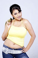 Meenakshi, spicy, hot, navel, photos