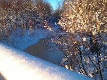 Vintertider