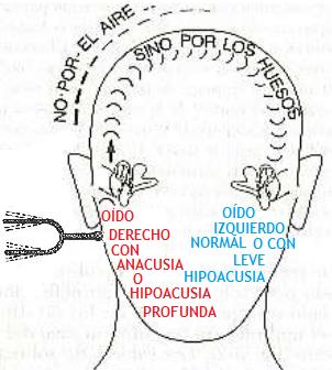 how to light a weber q pdf