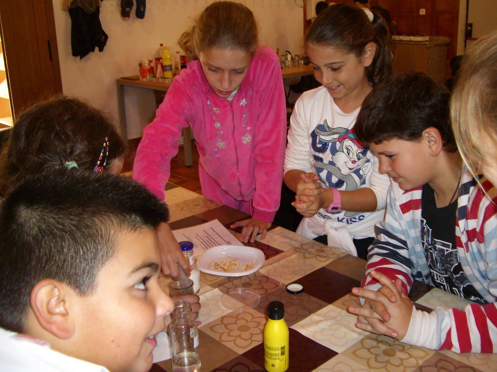 Alumnado de primaria del colegio ram n crossa ubrique for Ceip jardin botanico