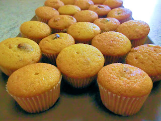 Mini muffin alla zucca e cranberries plum cake