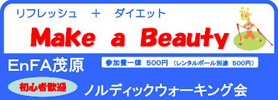 リフレッシュ&ダイエット!Make A Beauty!初心者歓迎!EnFA茂原ノルディックウォーキング会