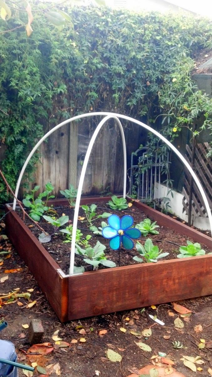 QTu0027s Random Ramblings: Garden Tutorial   How To Make A Super Cheap  Hoop House For Winter