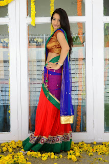 Santhoshi Sharma in Colorful Saree Lovely Pics