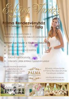 Tata-Palmahaz