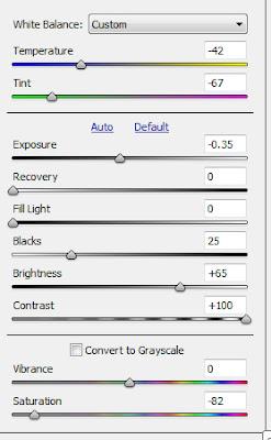 raw5 Mengenal Tool Adobe Camera RAW dengan Photoshop