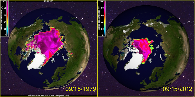 Arctic Sea Ice - then and now