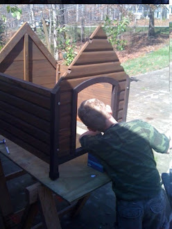 Stuart May working hard on the Pet House