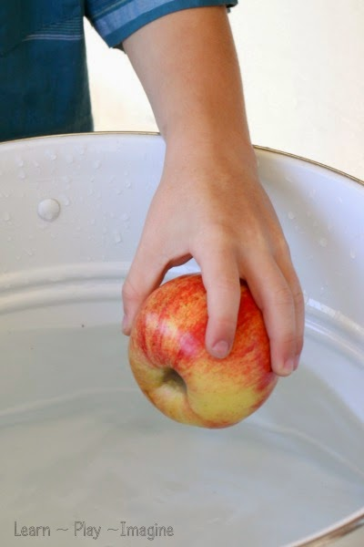 A simple twist on the classic sink or float game - water science for kids
