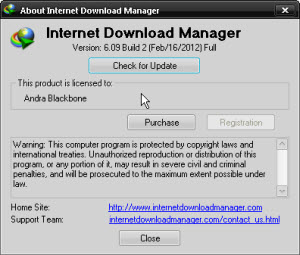 Download Internet Download Manager 6.09 build 2 Final - Andraji