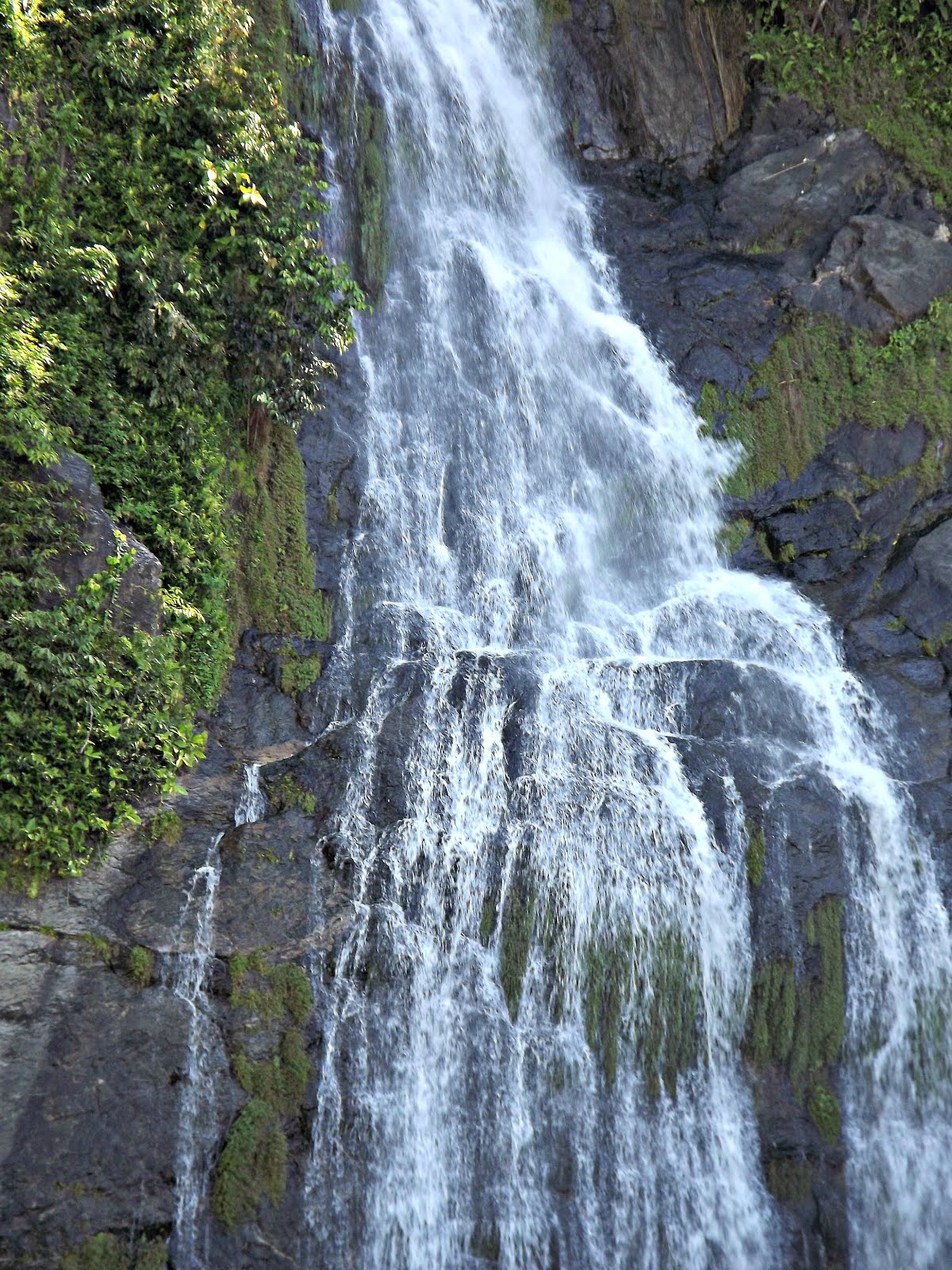 Barron Falls QLD