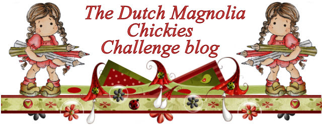DCCM Challenge Blog