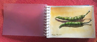 Water colour travel sketch book by Manju Panchal