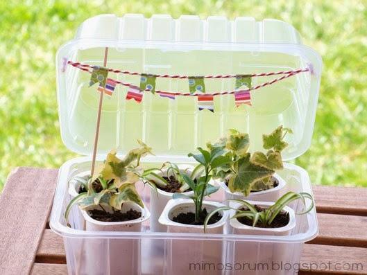 Mimosorum c mo hacer un invernadero casero diy make a Materiales para jardineria