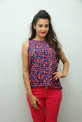 diksha panth sizzling photo shoot-thumbnail-12