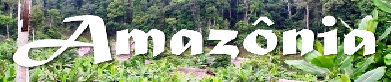 Curta fotos da Amazônia