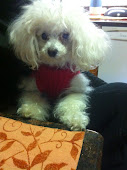 14 years old My Sweet Girl!!