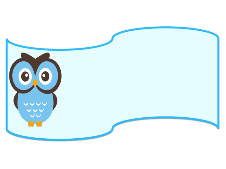 Stellar in Sixth: Owl Themed Name Tags