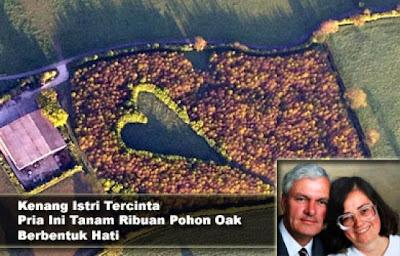 Untuk Mengenang Istri Tercinta, Pria Ini Menanam Ribuan Pohon Oak Berbentuk Hati [ www.BlogApaAja.com ]