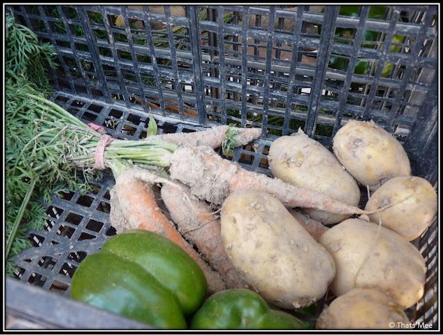 légumes bio marché 104 Cent Quatre Paris 19ème