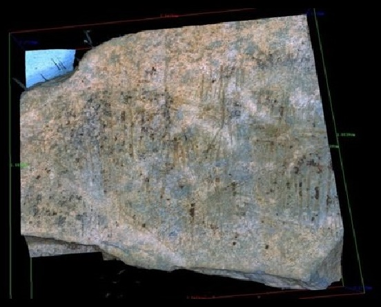 14,000-year-old Ice Age site found on Jersey Island