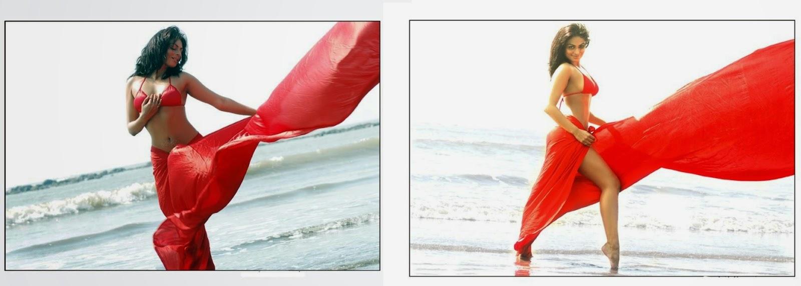 neeru bajwa navel show pcis in saree latest neeru bajwa hot navel show pics free download