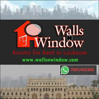 Walls N Window
