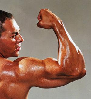 tips membentuk otot tubuh hanya untuk anda 123