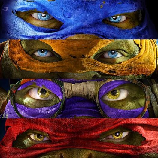 Go Ninja go Ninja go