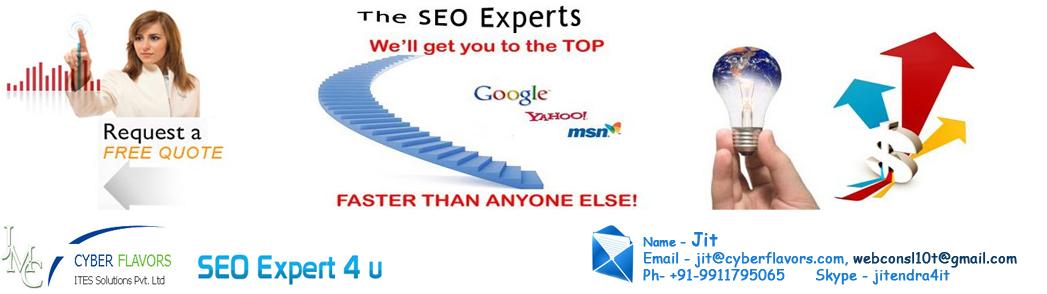 SEO Expert Delhi, Mumbai, Kolkata, Chennai, Bangalore, India  | PPC Consultant India