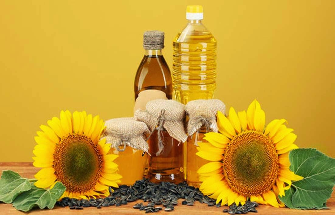 Prospek Bisnis Bunga Matahari